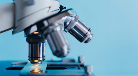 Homeopatia a veda