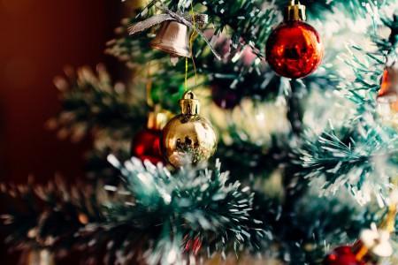 10 homeopatík pomocou ktorých prežijeme Vianoce