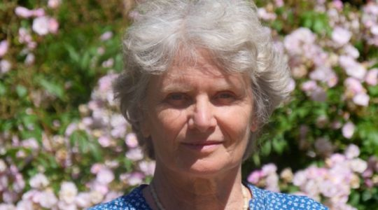 Deborah Collins - Roots of suffering - webinar